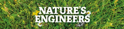 Nature's Engineers