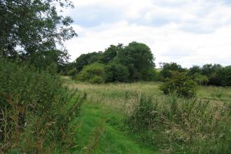 Blagrove Common Nature Reserve