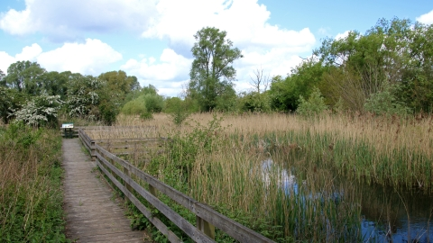 Purwell Ninesprings Nature Reserve
