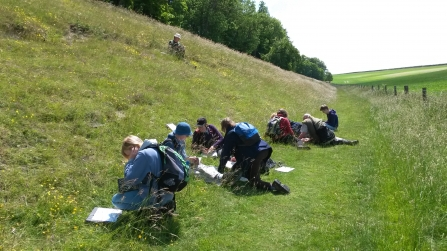 Local Wildlife Sites surveyors