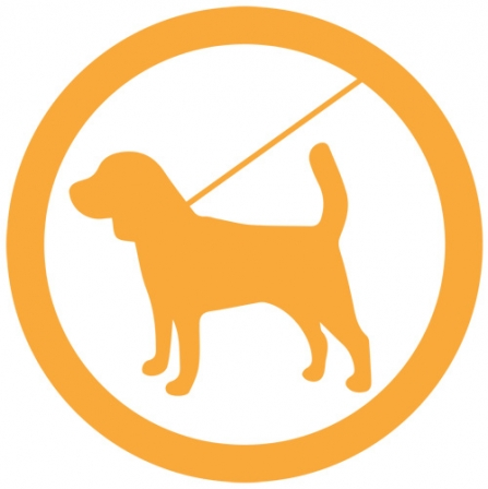 Dog sign - orange