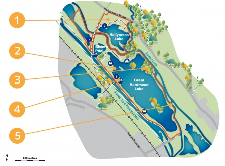 Amwell habitat creation project map