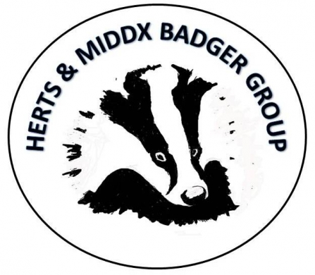 HMBG Herts and Middlesex Badger Group Logo
