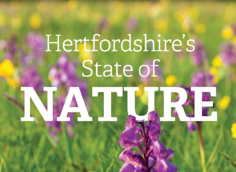 Hertfordshire's State of Nature cover